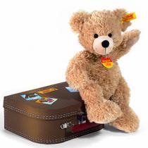 Fynn Teddybär im Koffer  als Prämie für Ihr Zeitschriften-Abo