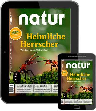 natur E-Paper   im Abo